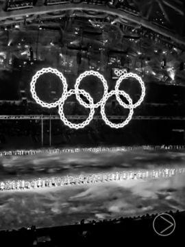 Jeux paralympiques - Sotchi